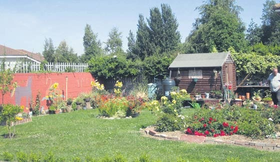 Balgaddy community garden, which was built up over several years by local volunteers