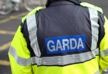 There have been calls for more Gardai in Dublin 15 following a spate of sexual assaults in the area